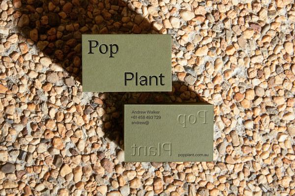 Pop Plant branding by Both Studio